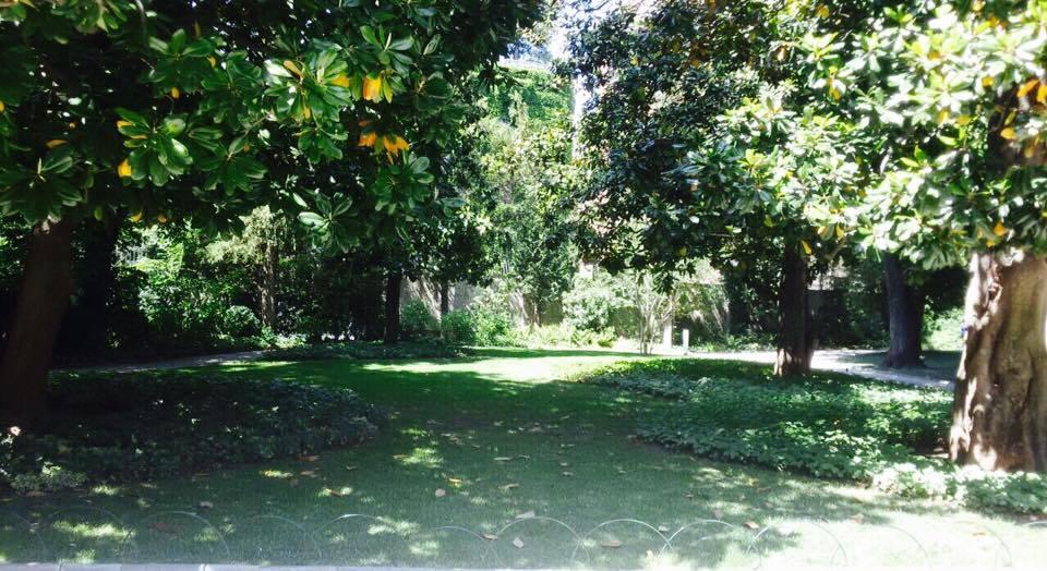 Verde Necchi, storie e segreti di un giardino nel centro di Milano