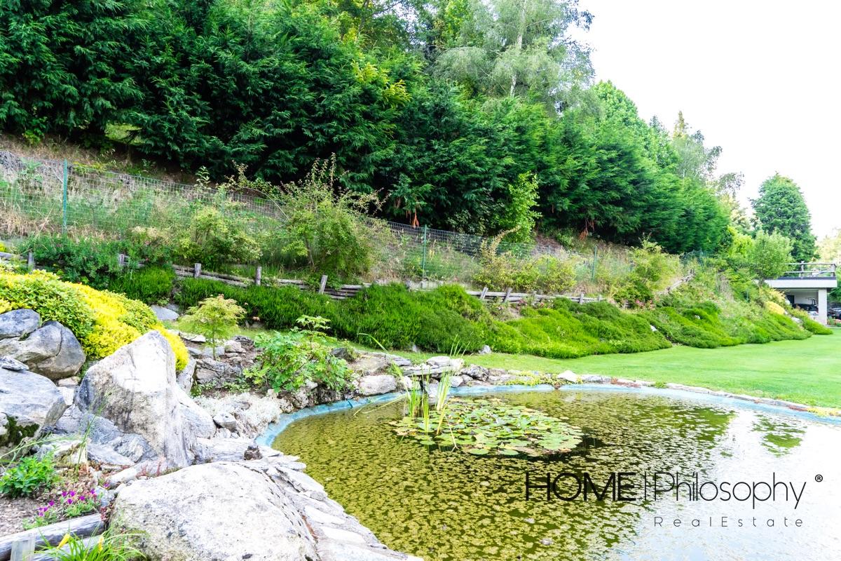 giardino - laghetto